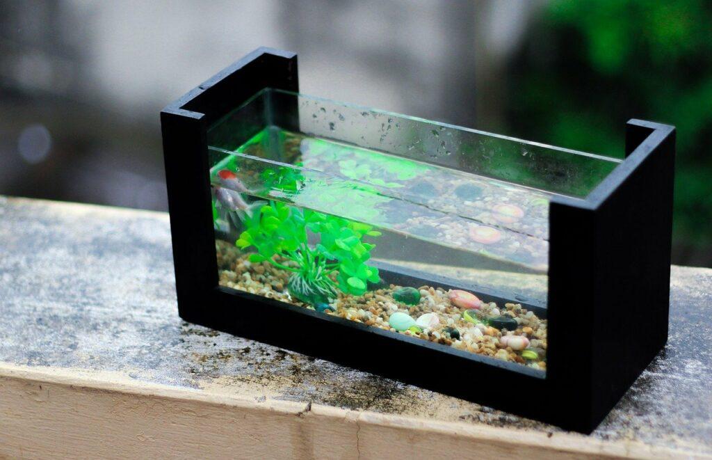 akvárium készítés házilag