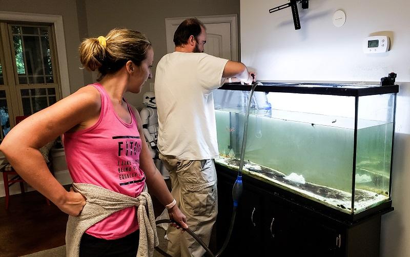 akvárium aljzat tisztítás