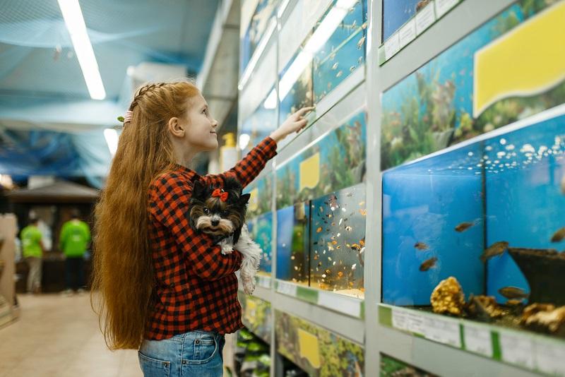 halakkal kapcsolatos tévhit
